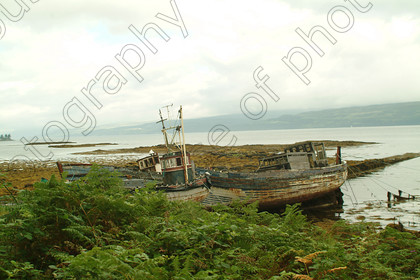 Copy of DSCF2049 